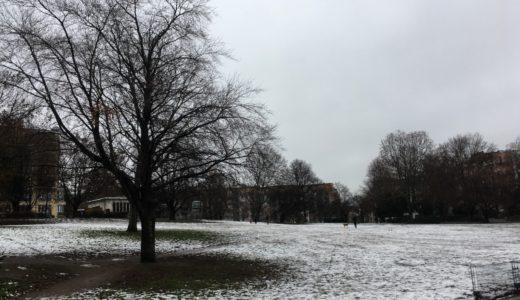 明けましておめでとう、初雪とロックダウン